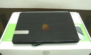 Netbook Gateway LT 40